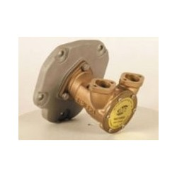 "JMP Impeller pump G6000F 1"" flange conn."
