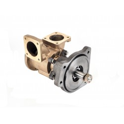 "JMP Impeller pump VP0120D 2"" flange conn"